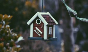 What Is the Average Cost of Hiring a Property Conveyancer in Australia, 2021?